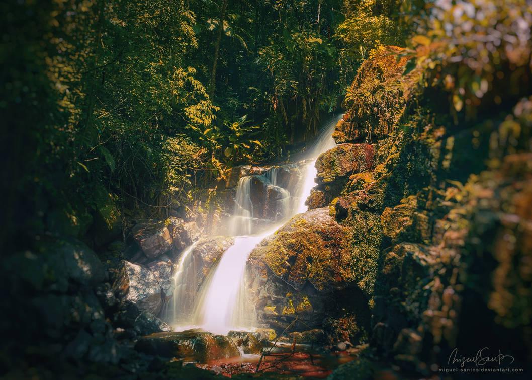 Stream of Light by Miguel-Santos