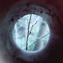 Through a Tube by merkero