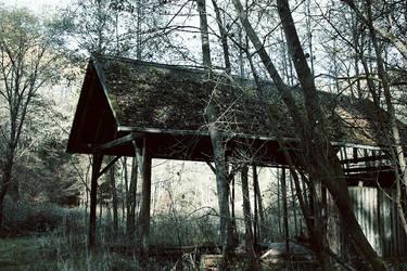 Cabin in the Woods by merkero