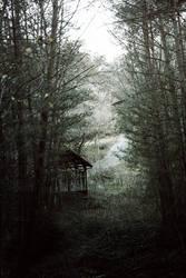 Came Back Haunted by merkero