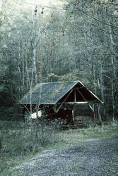 Cabin in the Woods II by merkero
