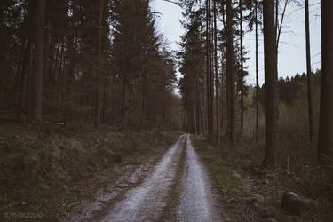 Skulking In The Woods II by merkero