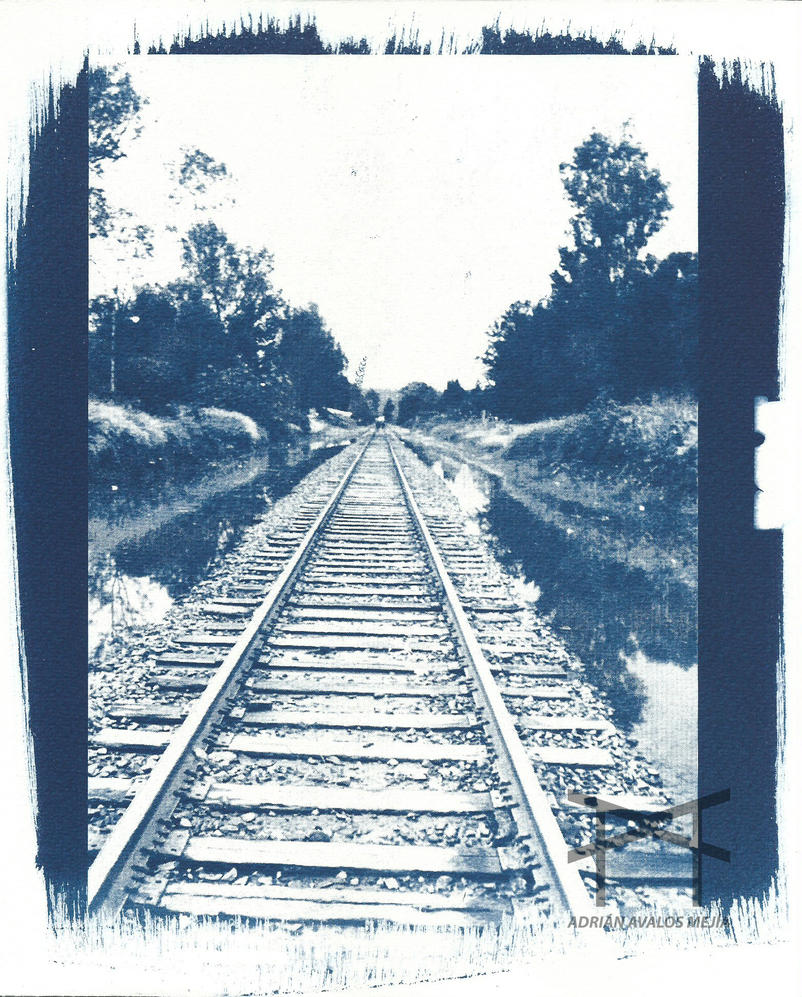 The Long Way Home - Cyanotype by Losesno