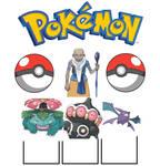 Spenser Pokemon team