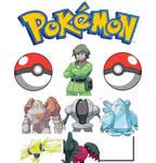 Brandon Pokemon team