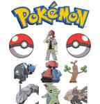 Roark Pokemon team