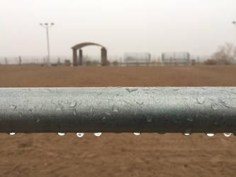 Rain and Fog in Mohave Desert by LisaLovelyLPA