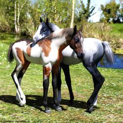 Pferdefreundschaft02 / Horse Friendship 02 by tinkerfairy57