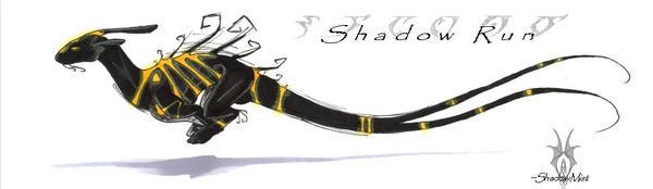 ShadowRun by ShadowedLight