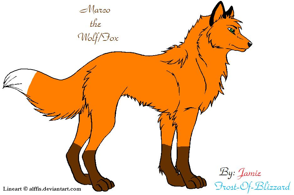 Marco the Wolf/Fox 2 by X-MarcoTheFox-X on DeviantArt