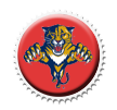 Florida Panthers Cap by sportscaps