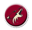 Phoenix Coyotes Cap by sportscaps
