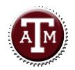 Texas A+M Cap by sportscaps