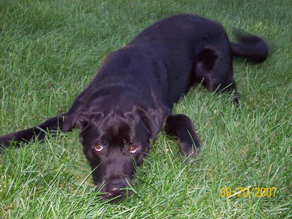 tamietora's Profile Picture