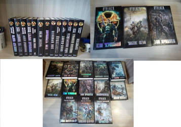 Book series S.T.A.L.K.E.R | 13 books by VilonaArt