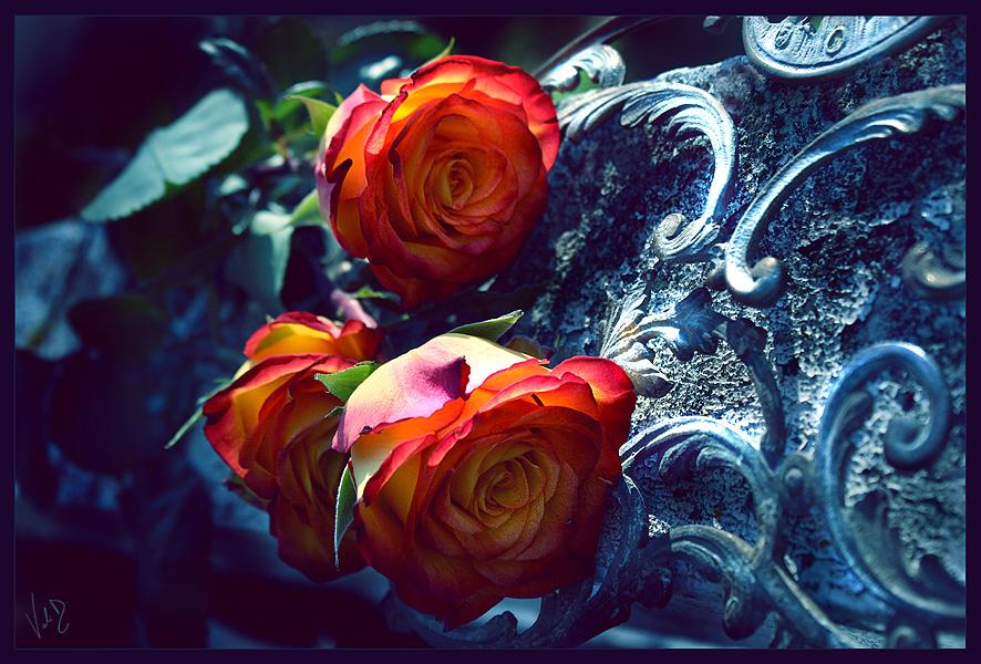 Valentina Kallas Memories_of_a_beautiful_past_by_ValentinaKallias