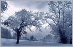 _Winter_