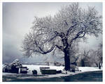My favorite place - winter
