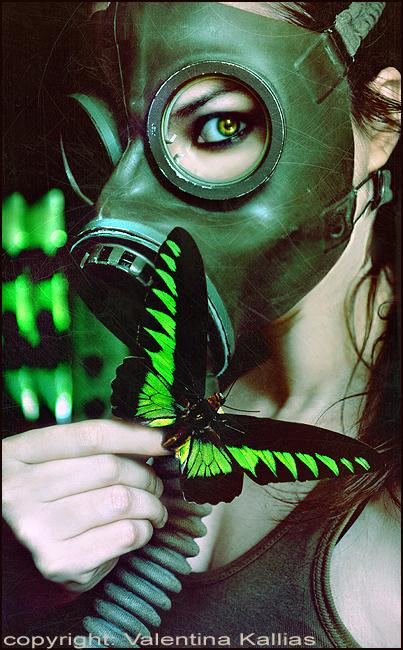 Radioactive Butterfly by ValentinaKallias
