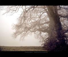 Beautiful Dark Dream by ValentinaKallias