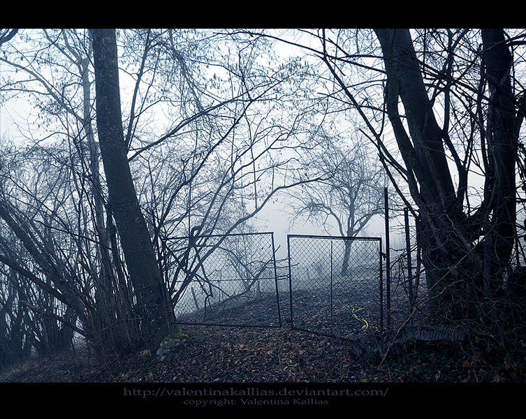 Gates to Silent Valley by ValentinaKallias