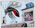 Dengue fever epidemic in Rio