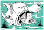 Saakashvili's adventure