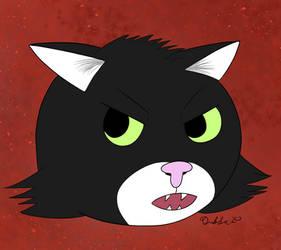 Angry Catsona