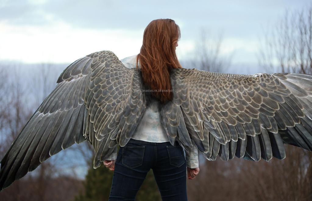 Maximum Ride Max Wings