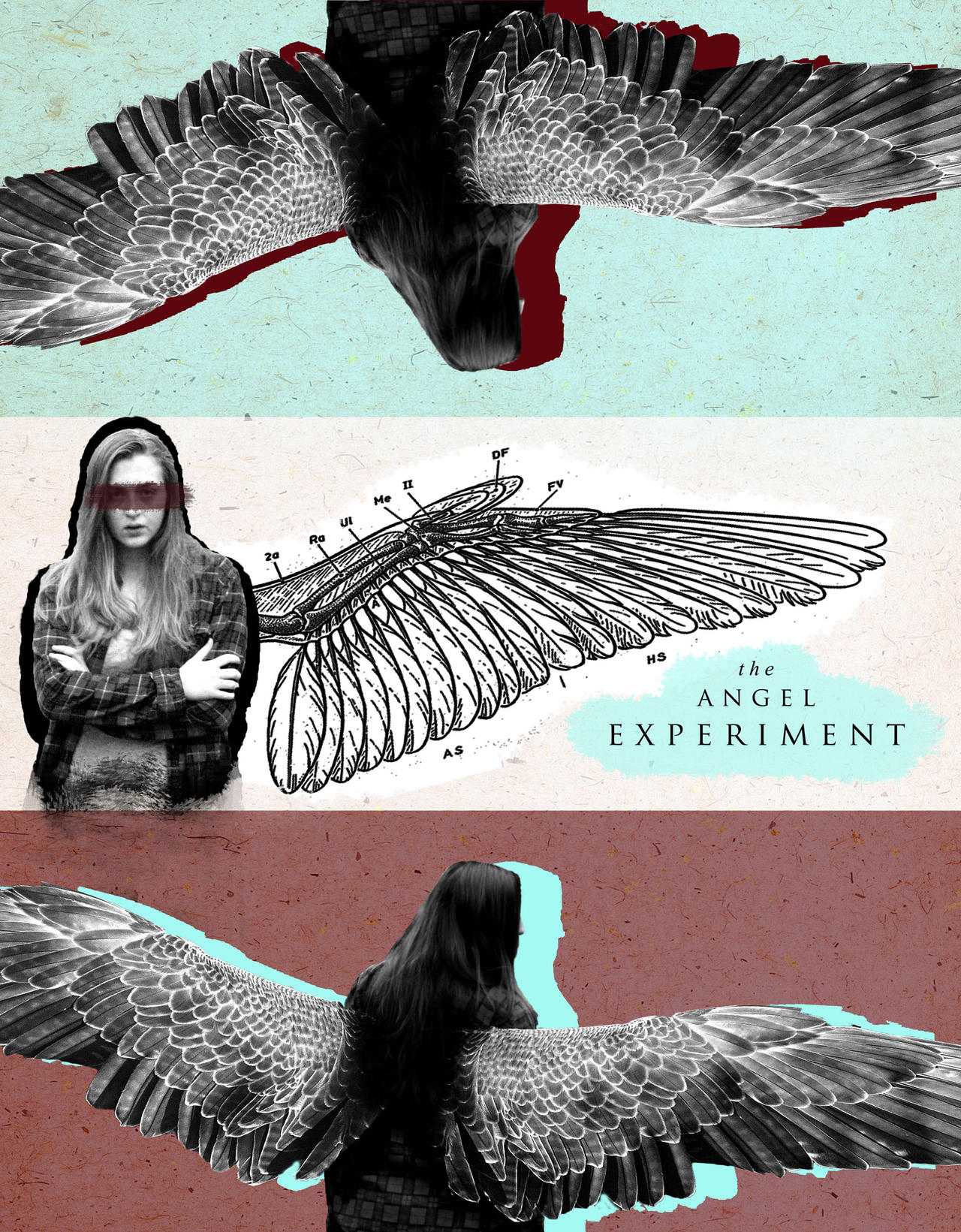 The Angel Experiment by IAmEmilyK on DeviantArt  The Angel Exper...