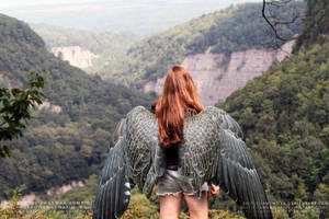 The Time of Maximum Ride by IAmEmilyK