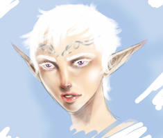 Female Snow Elf