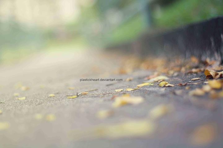 autumn days by plastickheart