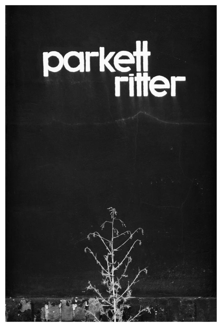 Parkett Ritter by joachim-hagen