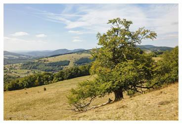 Himmeldunk Mountain by joachim-hagen