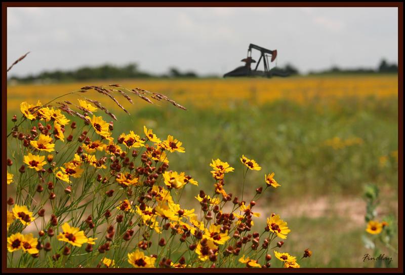 Oklahoma untitled by DanidaeSkye
