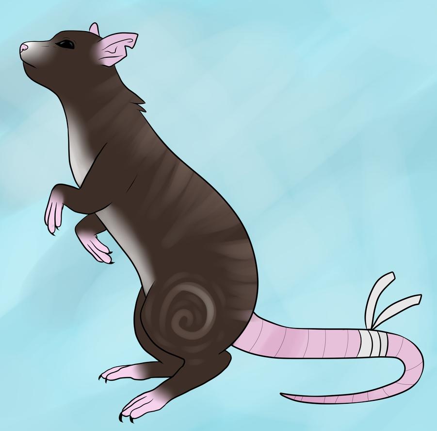 The Queen Rat (READ DESC!!!!) by ThePinkFluff
