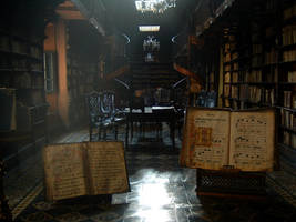 The Library by nibor