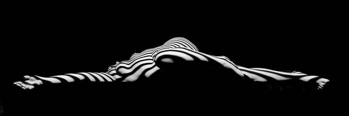 0519-NIS Black White Zebra Striped Woman Sensual by artonline