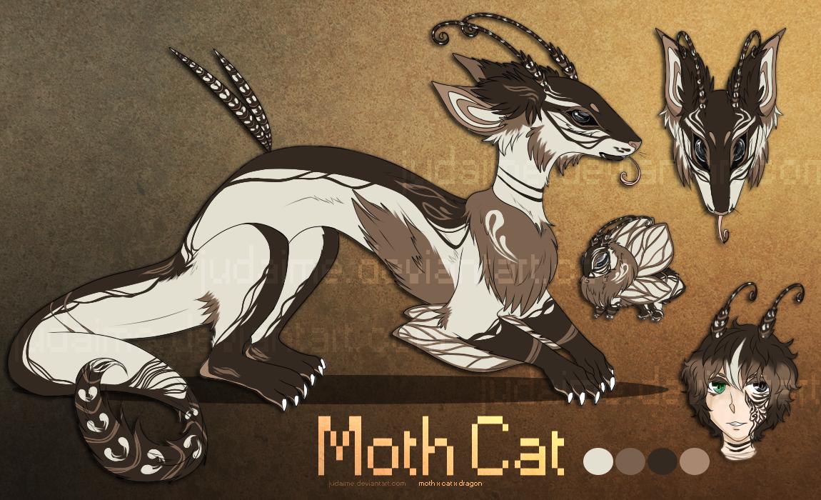 Cat Hybrid Anime Moth x Dragon x Cat Hybrid