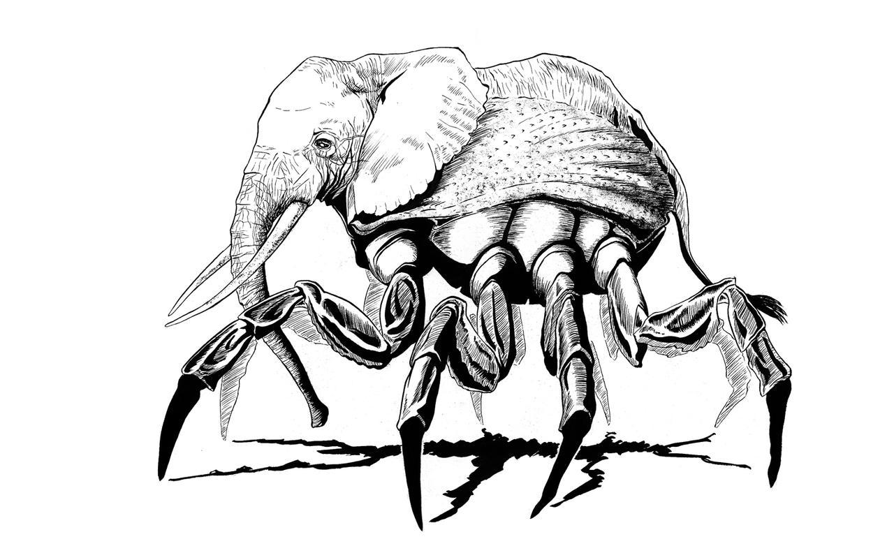 Elefante by wekufeh