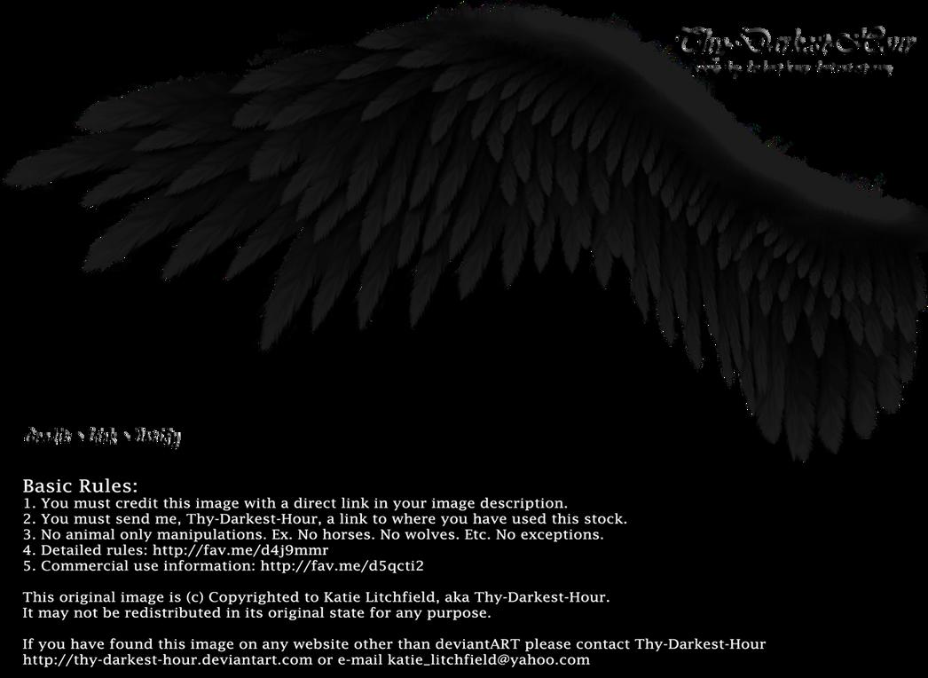 Winged Perfection   Black By Thy Darkest Hour D4u9