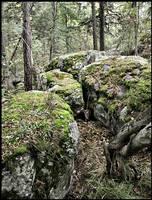 Druid Stones.