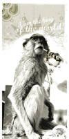 monkey id