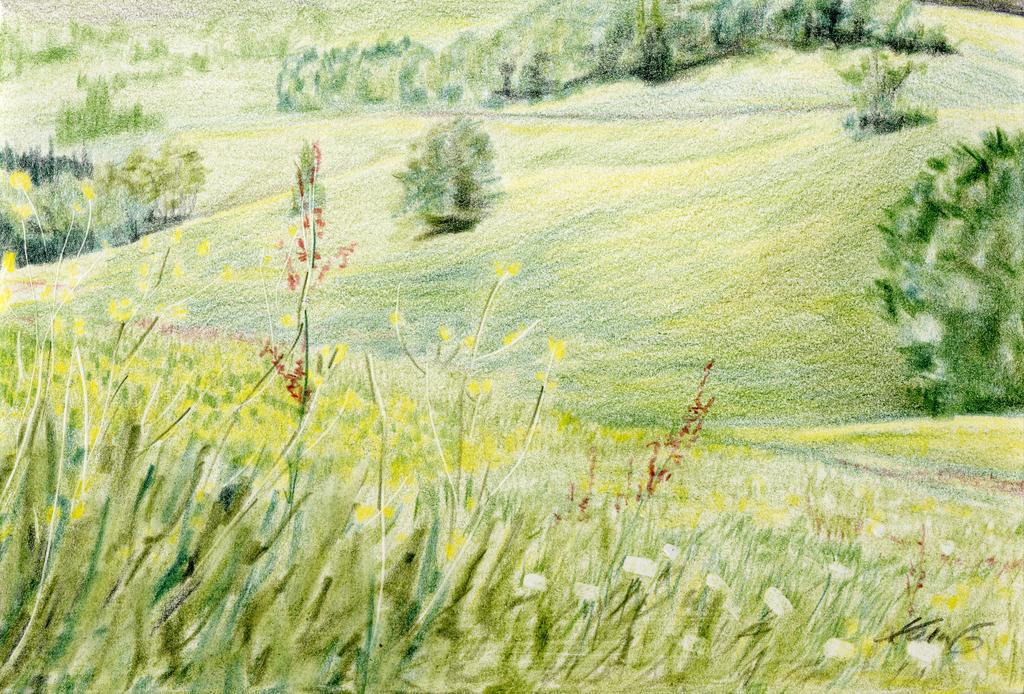 Landscape Pechgraben by tempelziege