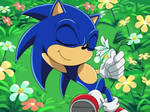 Sonic x Sonic the hedgehog smelling the flower