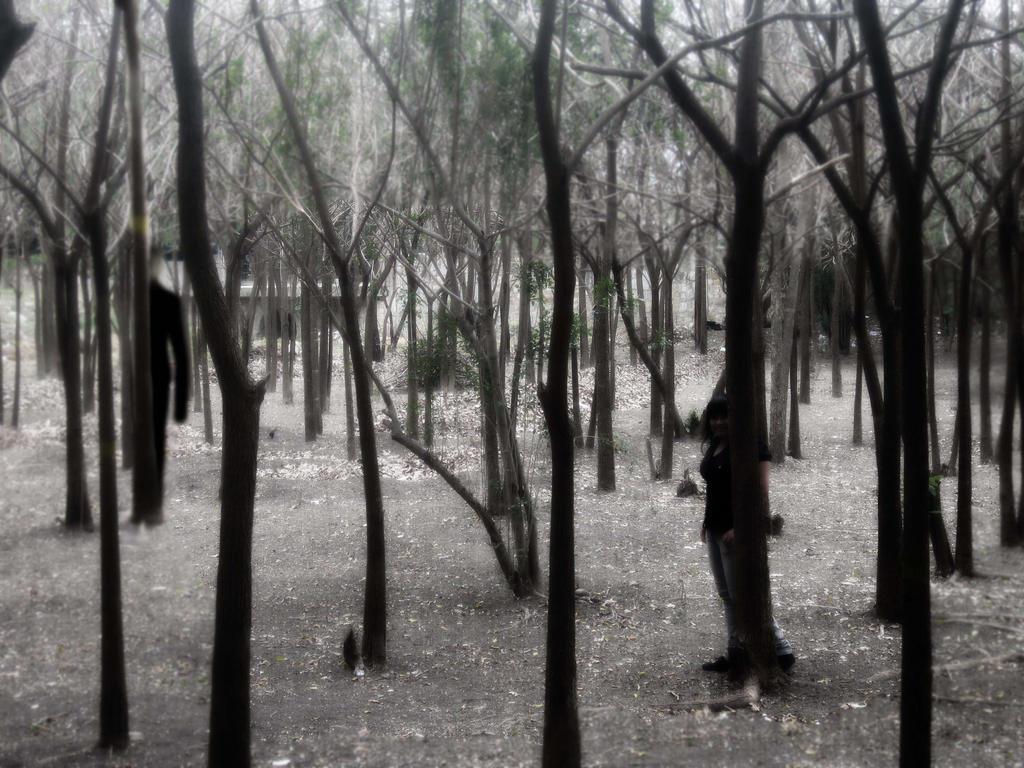 slenderman in the forest by shizuriiku