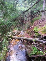 mountain stream 10 by luciferusss