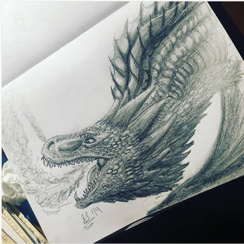 Drogon Pencil Shading Study by ScaleBound