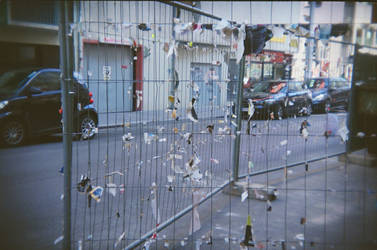 Wien in Holga 135BC: Will you run, when they come? by neuroplasticcreative